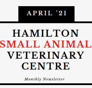 Hamilton Vets April Newsletter