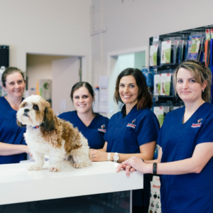 Hamilton Veterinary Services Staff