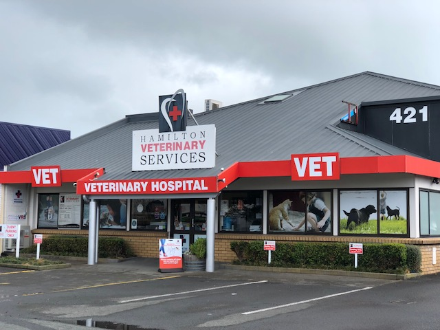 Hamilton Veterinary Services Location